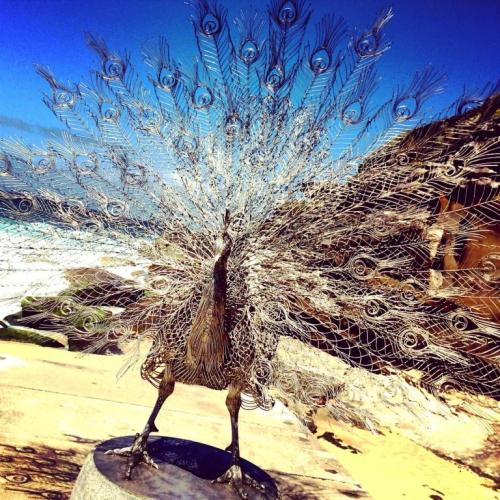 5 the blonde tourist blogger visits sculpture by the sea 2014 (29)